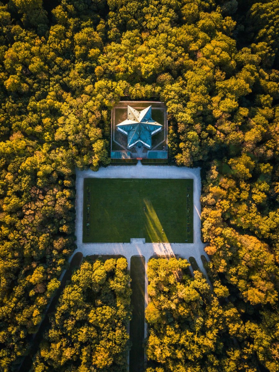 Star and forest drone photography