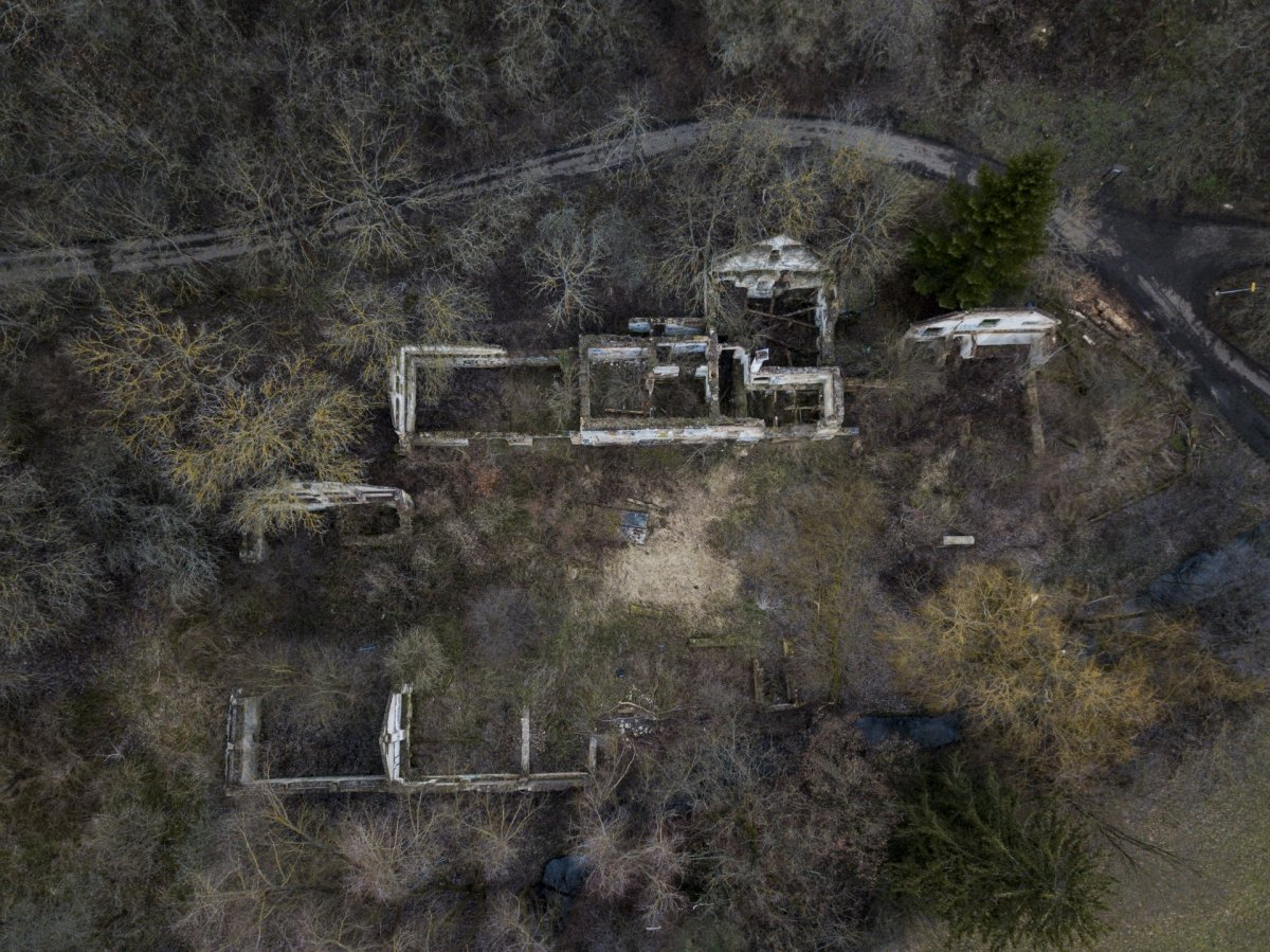 Ruin in forest drone photography